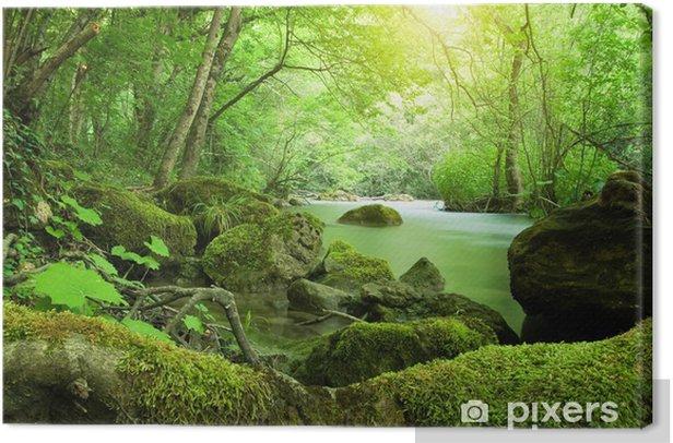 Tableau sur toile La rivière dans la forêt - Thèmes