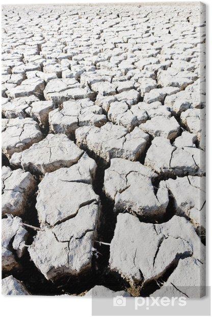 Tableau sur toile La terre ferme, le Parc régional de Camargue, Provence, France - Arrière plans