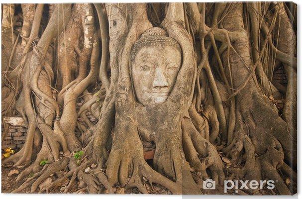 Tableau sur toile La tête du bouddha dans l'arbre à Watmahathat, Thaïlande - Asie