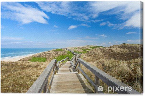 Tableau sur toile Le chemin sur les dunes - Eau