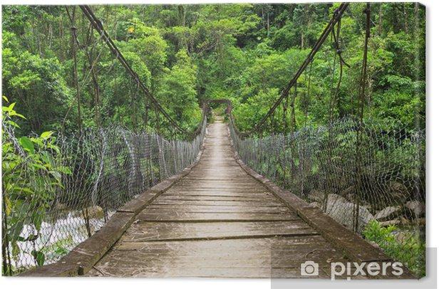 Tableau sur toile Le pont de pied de suspension dans la jungle de l'Equateur - Thèmes