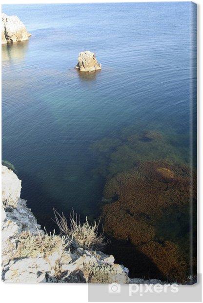 Tableau sur toile Les algues dans l'eau - Eau