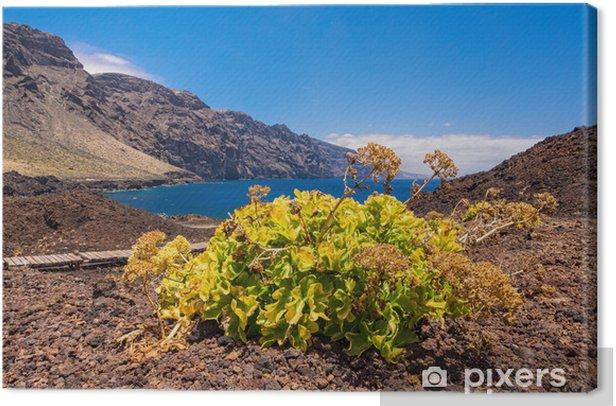 Tableau sur toile Les montagnes de Teno sur Tenerife. - Europe