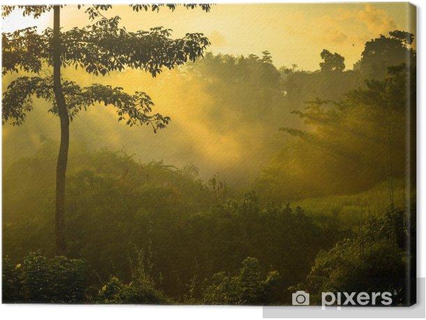 Tableau sur toile Lever de soleil sur la jungle - Thèmes