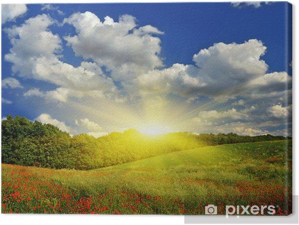 Tableau sur toile Lever de soleil sur le champ vert - Thèmes