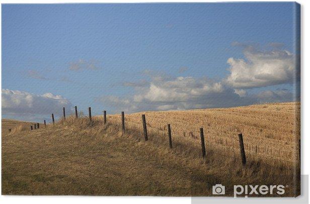 Tableau sur toile Ligne de clôture dans le champ. - Villes américaines