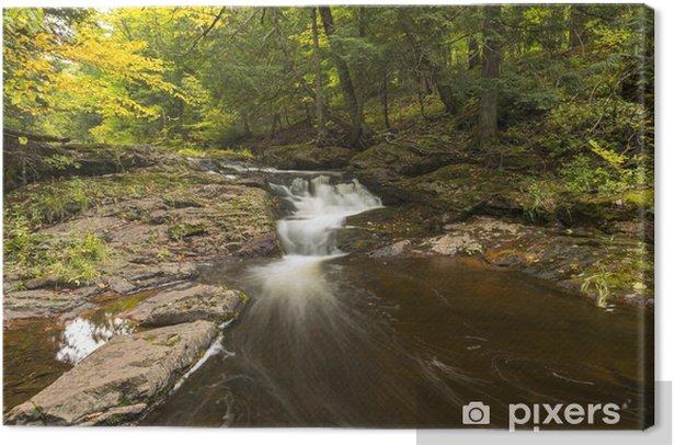 Tableau sur toile Little Falls rivière Carp - Eau