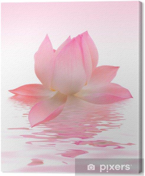 tableau sur toile lotus pixers nous vivons pour changer. Black Bedroom Furniture Sets. Home Design Ideas
