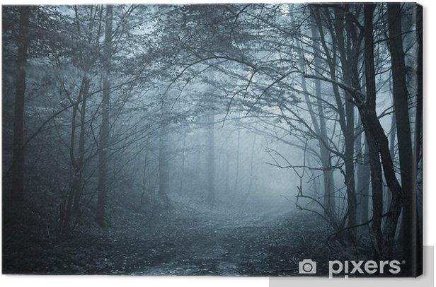 Tableau sur toile Lumière bleue dans une forêt mystérieuse avec le brouillard - Styles