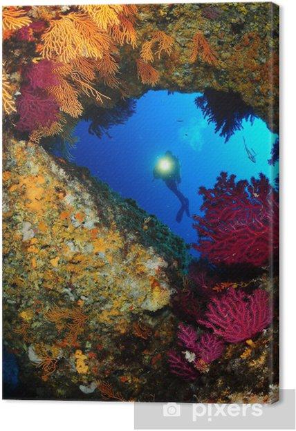 Tableau sur toile Mediterrannee paysage sousmarin - Asie