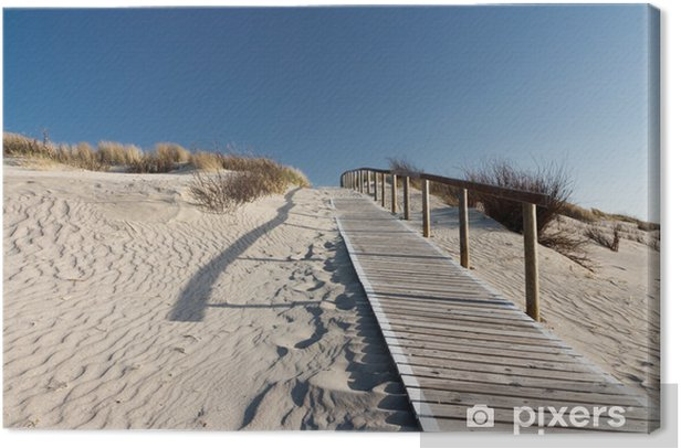 Tableau sur toile Mer du Nord plage à Langeoog - Thèmes