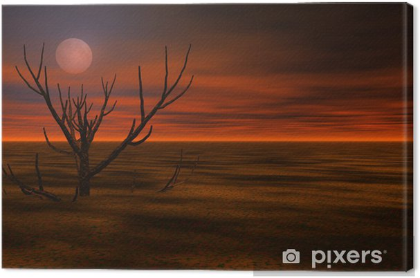Tableau sur toile Misty paysage de nuit 3d - Autres sentiments