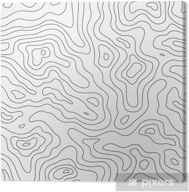 Tableau sur toile Modèle sans couture de carte topographique. fond de vecteur - Business