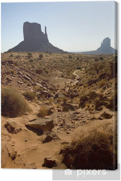 Tableau sur toile Monument Valley Rock Formations - Vie