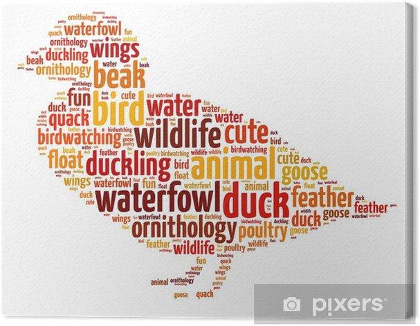 Tableau sur toile Mots illustration d'un canard sur fond blanc - Oiseaux