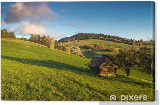 Tableau sur toile Mountain Meadow - Merveilles naturelles