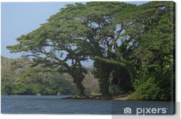 Tableau sur toile Nicaragua Archipel de Solentiname - Amérique