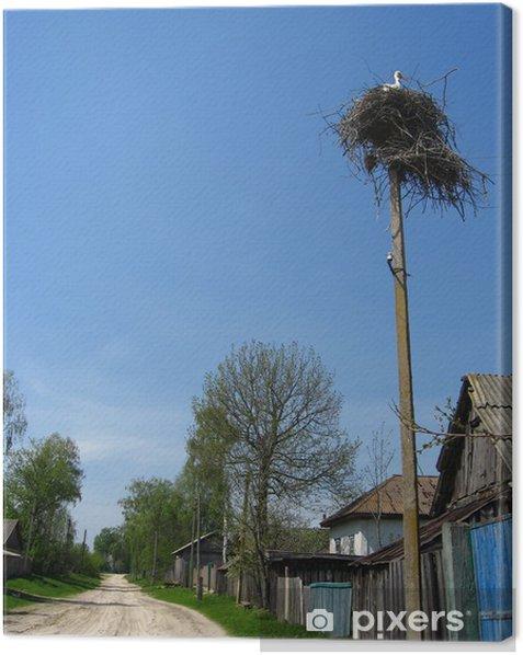 Tableau sur toile Nid de cigognes dans le village - Oiseaux