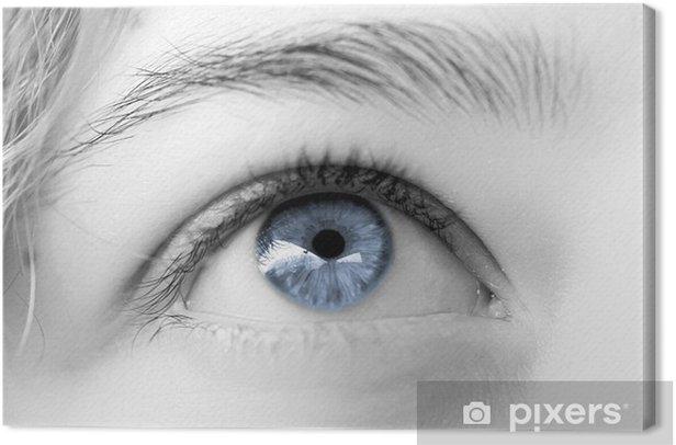 Tableau sur toile Oeil de femme bleu clair ciel , regard rêveur - Thèmes
