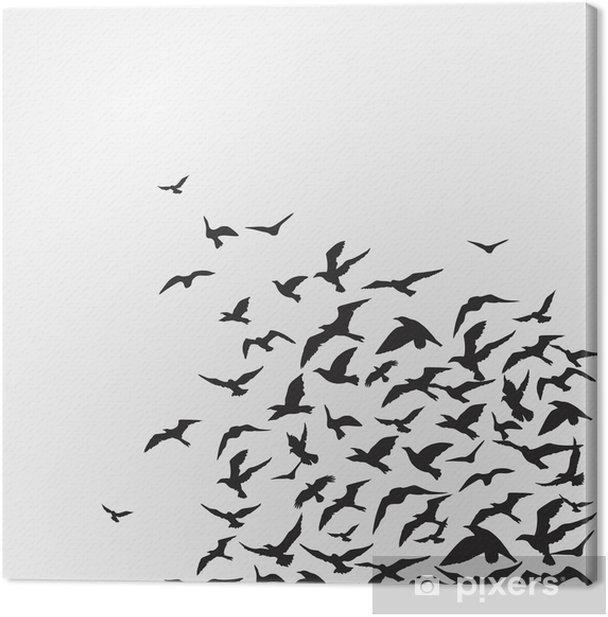 Tableau sur toile _ oiseaux d'arrière-plan - Thèmes