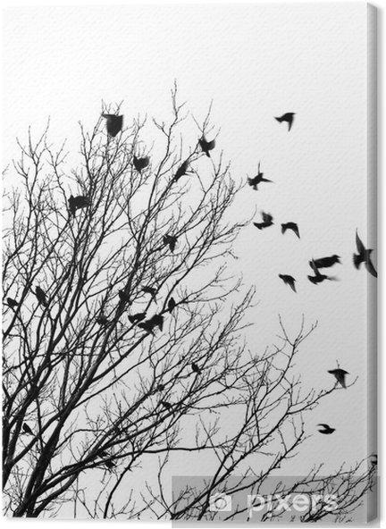 Tableau sur toile Oiseaux envol - Styles