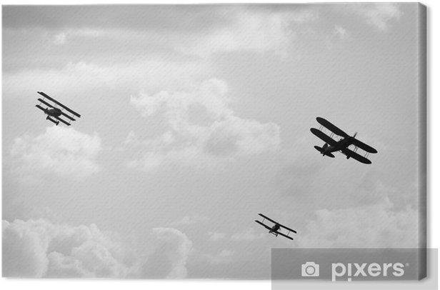 Tableau sur toile Old airplanes - Thèmes