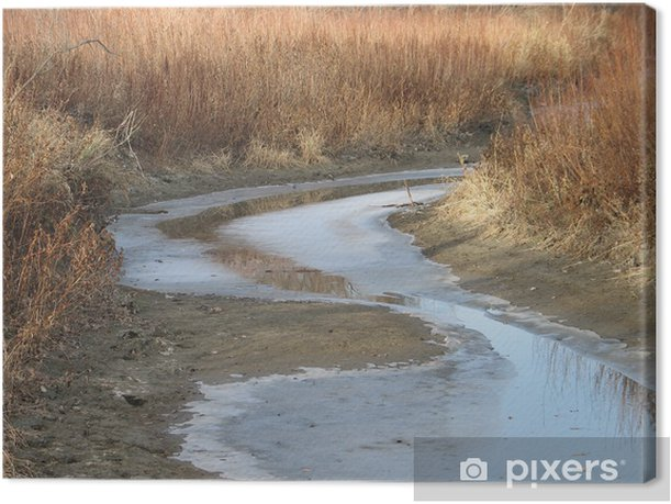 Tableau sur toile Omand ruisseau en hiver - Merveilles naturelles