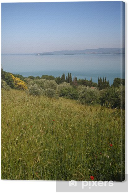 Tableau sur toile Ombrie, le lac Trasimène - Europe