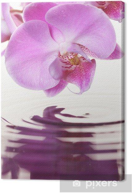 Tableau sur toile Orchide rose - Thèmes