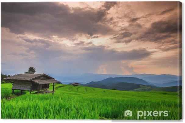 Tableau sur toile Paddy au coucher du soleil, dans la province de Chiangmai de la Thaïlande - Agriculture