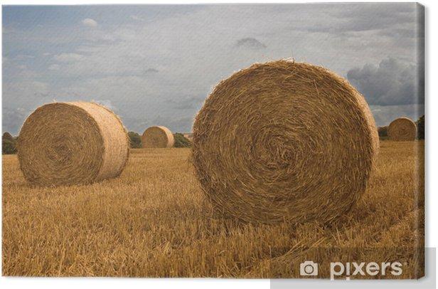 Tableau sur toile Paille rouleaux - Agriculture