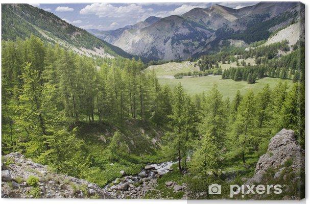 Tableau sur toile Paisaje Alpino - Europe
