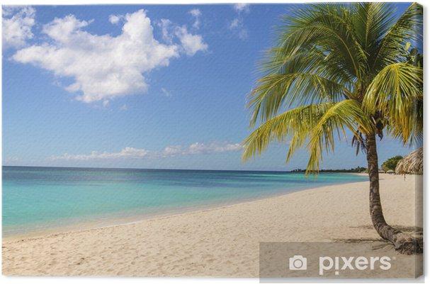 Tableau sur toile Palm treen sur la plage exotique des Caraïbes contre le ciel bleu - Pays