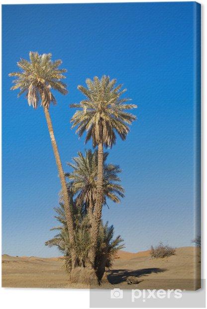 Tableau sur toile Palmiers dans le désert du Sahara - Vacances