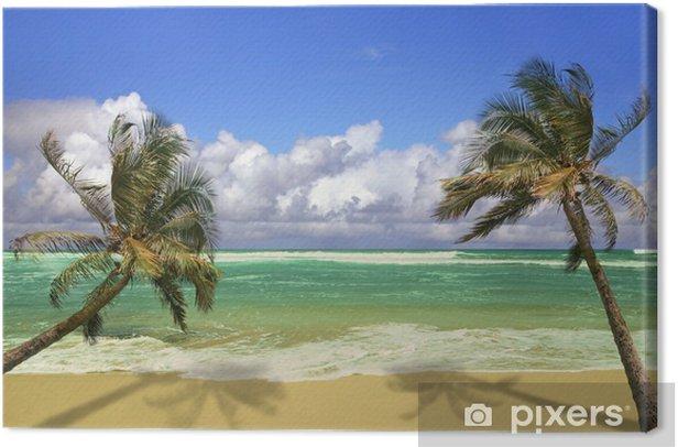 Tableau sur toile Palmiers suspendue au-dessus d'une plage de sable blanc - Thèmes