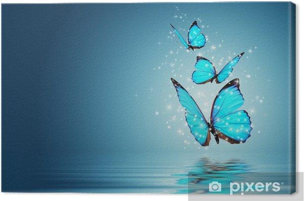 Tableau sur toile Papillon -