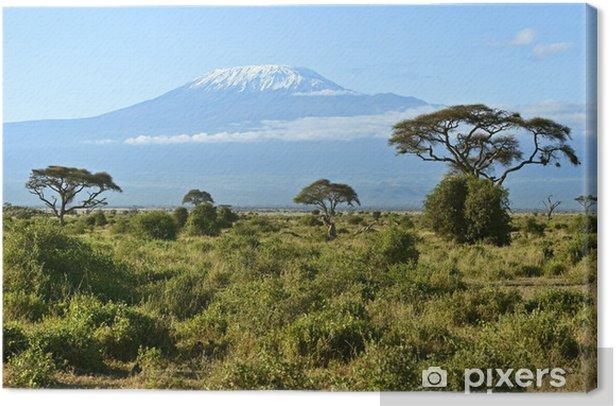Tableau sur toile Parc national Amboseli - Vacances