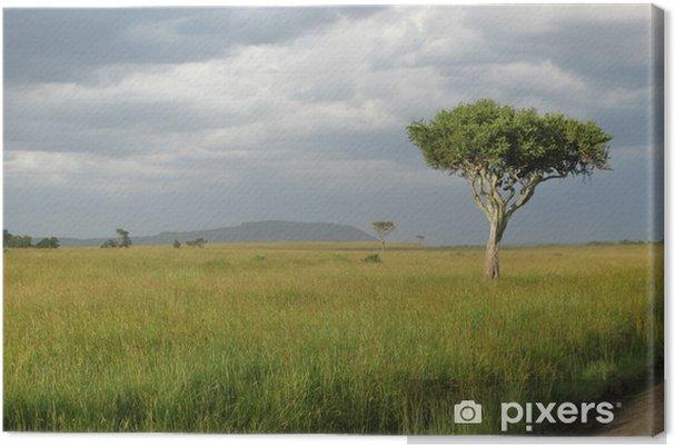 Tableau sur toile Parc national de la Tanzanie - Merveilles naturelles