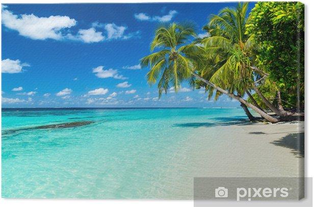 Tableau sur toile Paumes coco sur la plage tropicale paradisiaque avec eau bleu turquoise et bleu ciel - Eau