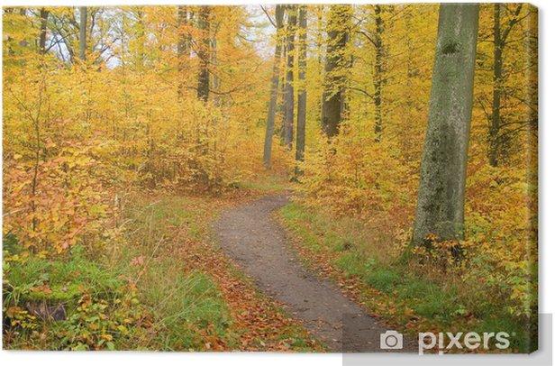 Tableau sur toile Paysage d'automne - Nature et régions sauvages