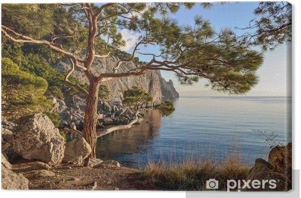 Tableau sur toile Paysage d'été avec des falaises boisées par la mer. De la mer Noire. - Eau