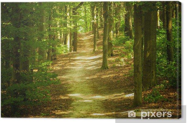 Tableau sur toile Paysage de forêt - Thèmes
