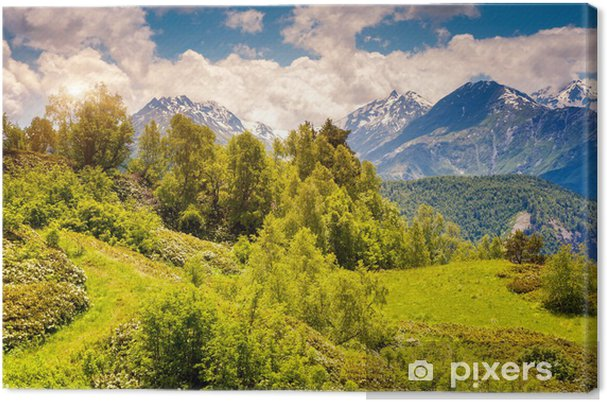 Tableau sur toile Paysage de montagne de la Géorgie - Montagne