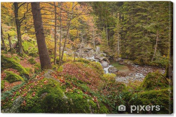 Tableau sur toile Paysage de montagne en robe d'automne - Arbres