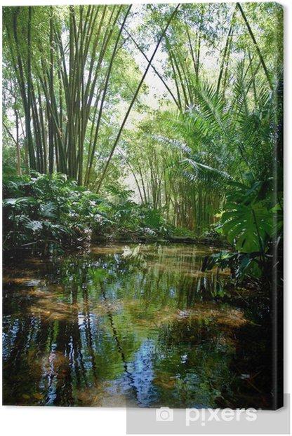 Tableau sur toile Paysage Jungle - Thèmes