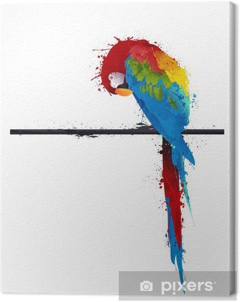 Tableau sur toile Perroquet perruche vecteur, graffiti - Thèmes