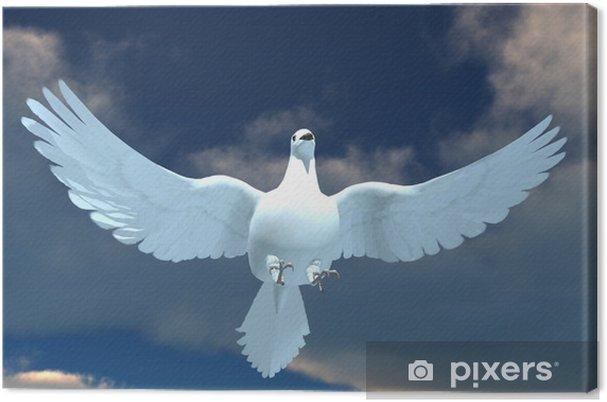 Tableau sur toile Pigeon - Oiseaux