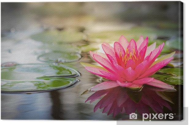 Tableau sur toile Pink lotus -