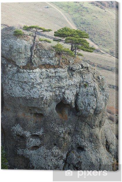 Tableau sur toile Pins à roches Demirji, Esprit vallée célèbre monument - Europe