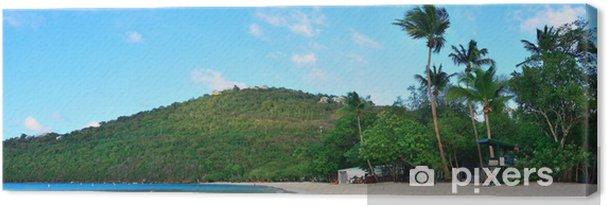 Tableau sur toile Plage Îles Vierges - Autres